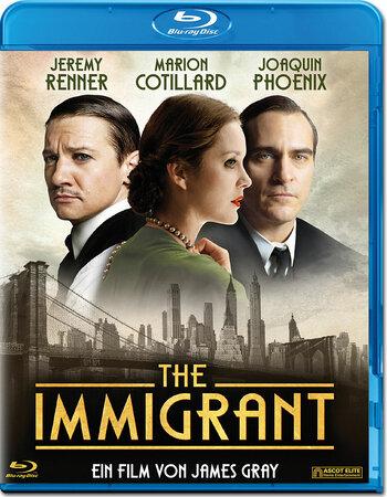 The Immigrant (2013) Dual Audio Hindi 480p BluRay 350MB