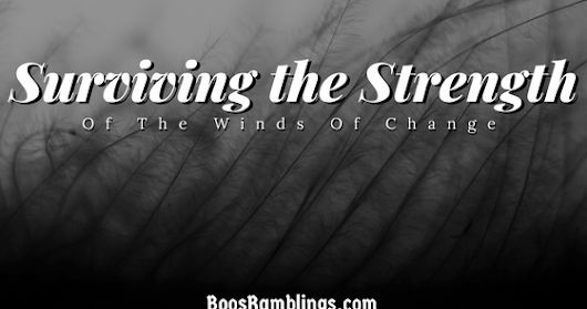 Surviving The Strength Of The Winds Of Change