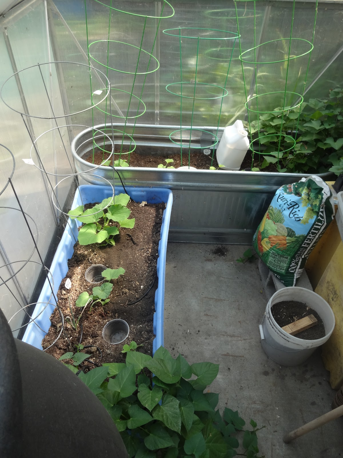 The Scientific Gardener: Purpose + Gardens on