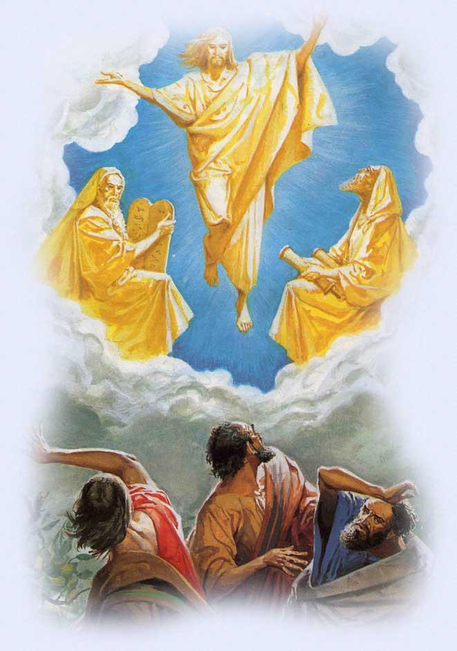 Il Santo Rosario e il messaggio della Divina Misericordia ...