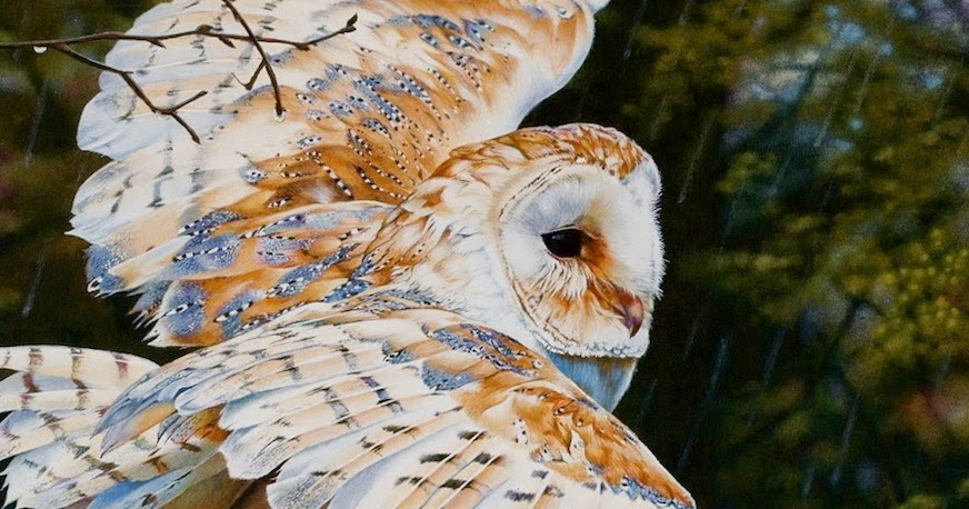 Realistic animal painting ~ Creative Art and Craft Ideas