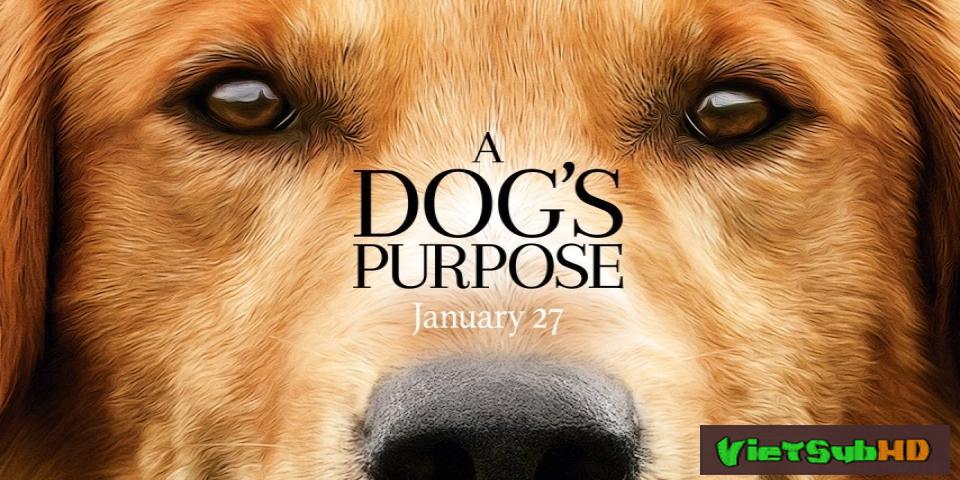 Phim Mục đích sống của một chú chó VietSub HD | A Dog's Purpose 2017