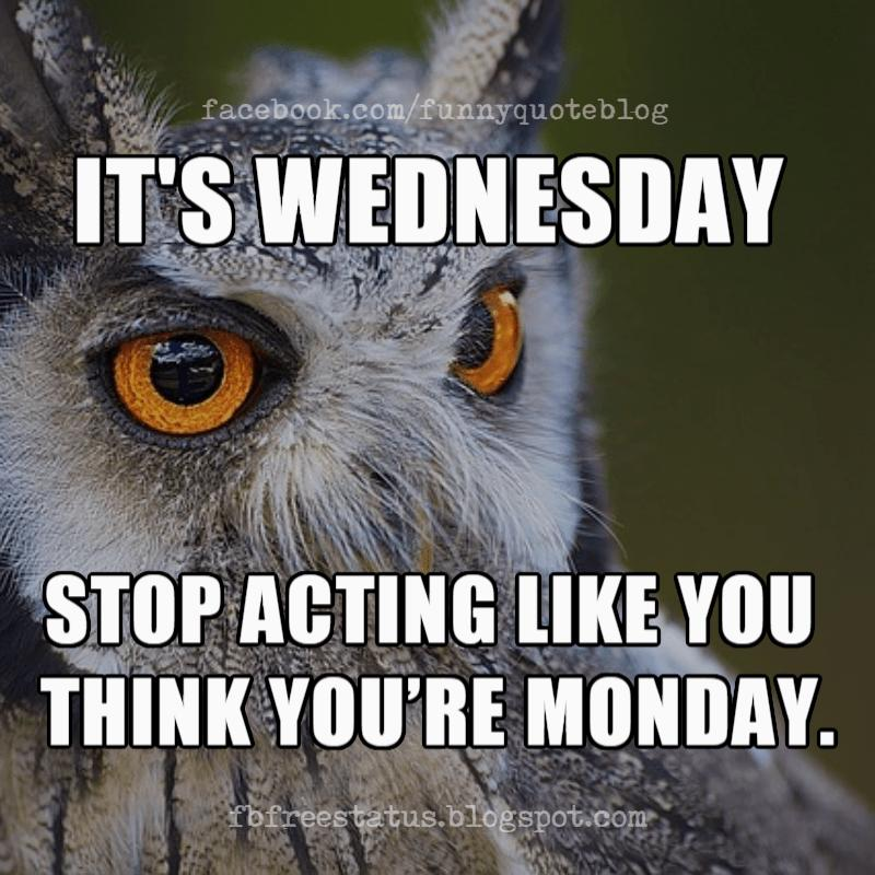 Wednesday Memes, It's Wednesday stop acting like you think you're Monday.