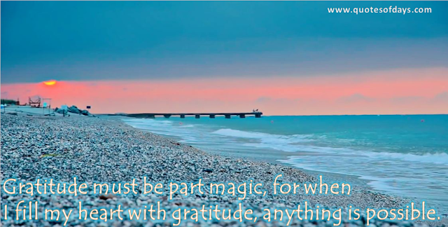 Gratitude must be part magic, for when  I fill my heart with gratitude, anything is possible.