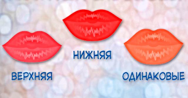 Если верхняя больше нижней и наоборот: какая загадка заключена в ваших губах