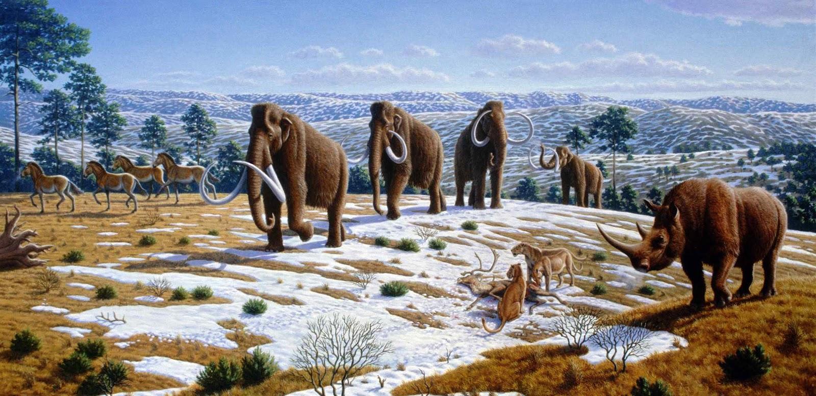 Prehistoric Human Early Life Prehistoric Animals
