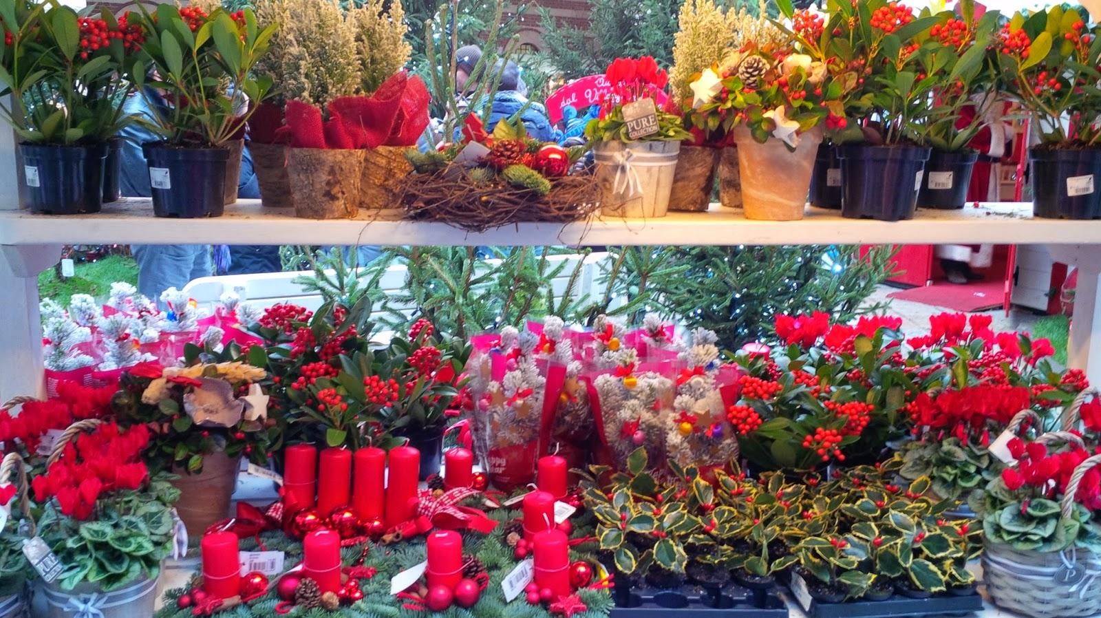 Christmas display at Verona Christmas market