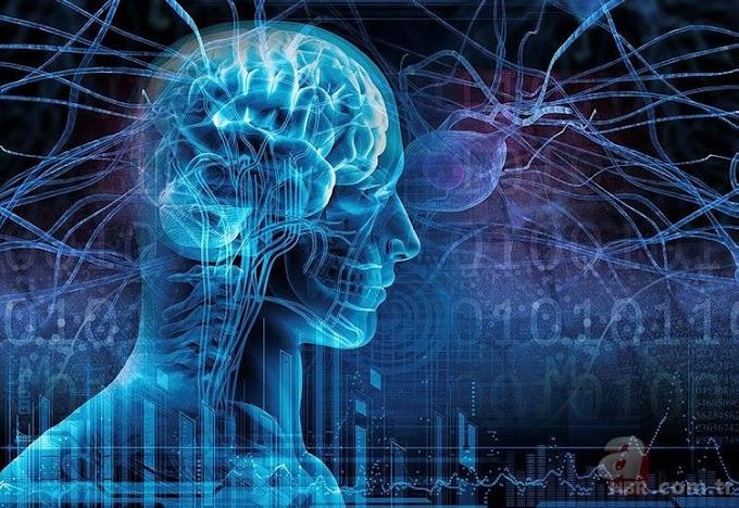 Beyin Daha İyi Nasıl Çalıştırılır?