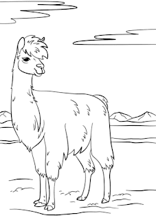 Llama Coloring Pages For Print Images