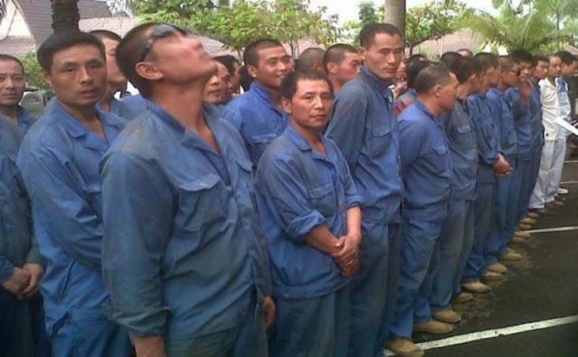 Jumlah Tenaga Kerja Asing Membludak, Mayoritas dari China