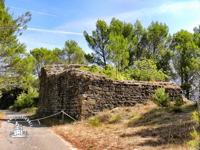LE TEIL (07) - Le château et le bourg médiéval