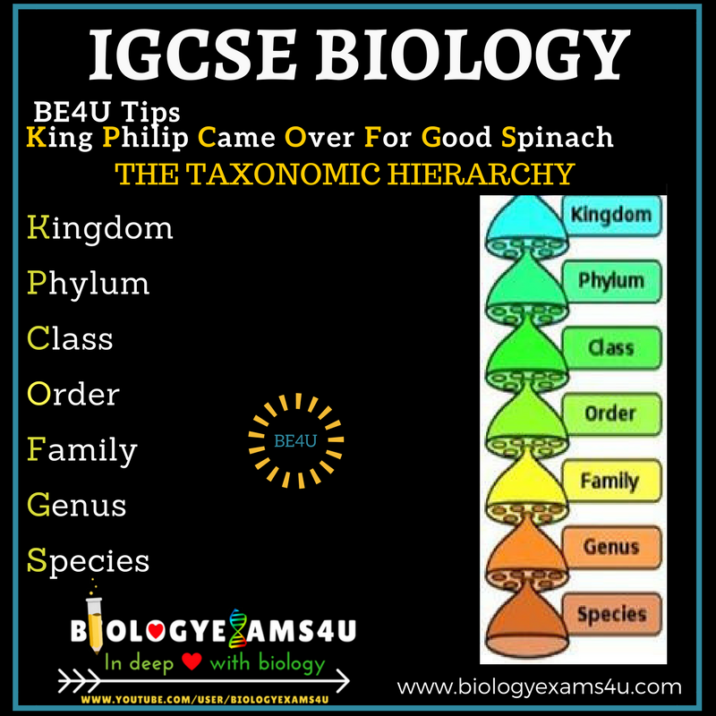 biology phylum notes Biology notes (all in one) here is a pdf file with all biology notes for you to download click on the pop-out button on the upper right corner of the pdf file to have full view or click here to download.