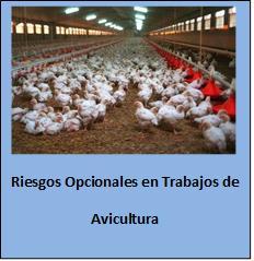 Riesgos en la Avicultura