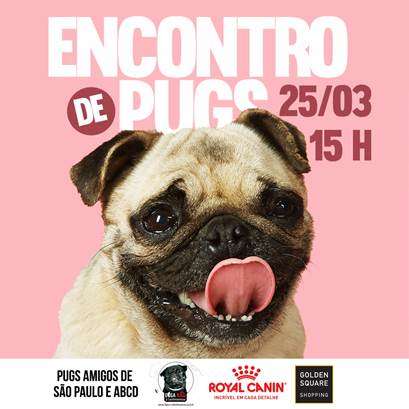 Golden Square Shopping realiza encontro de cães da raça pug