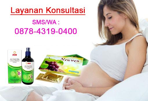 biaya program hamil holistic