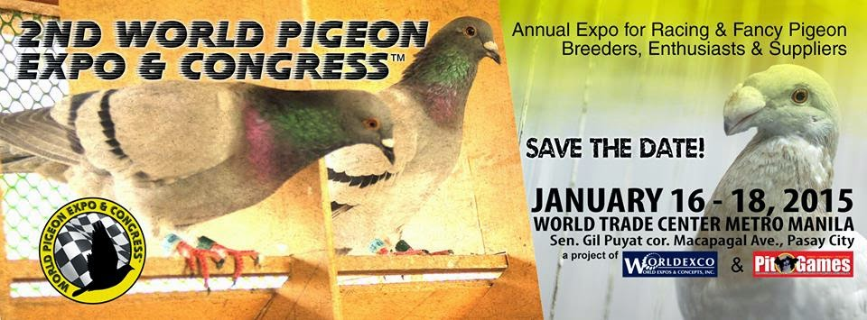 Pigeon Racing in Philippines- The Next Big Thing: 2015 WORLD PIGEON