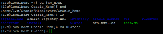 OPatch Directory