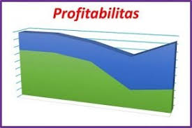 profitablitas-www.frankydaniel.com