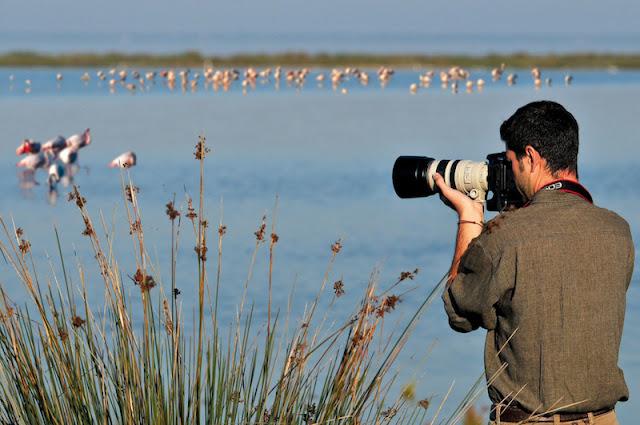Bird Century Goa