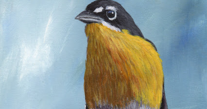 Yellow Breasted Chat in acrylics