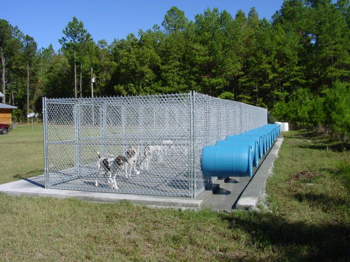 The Real Apbt Dog Kennel Setups And Designs