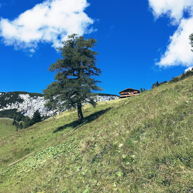 GrinseStern, Berg, Mountain, Achensee, me, feel free, Frei sein, Tirolliebe, tirol