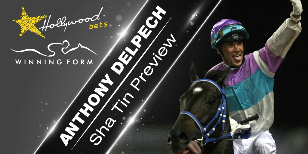 Anthony Delpech - Sha Tin Preview - Winning Form and Hollywoodbets