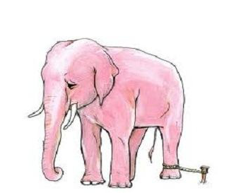 A Story for Kids Mind is the Ruler : The elephant rope