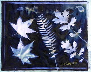 Wet cyanotype_Sue Reno_Image 215