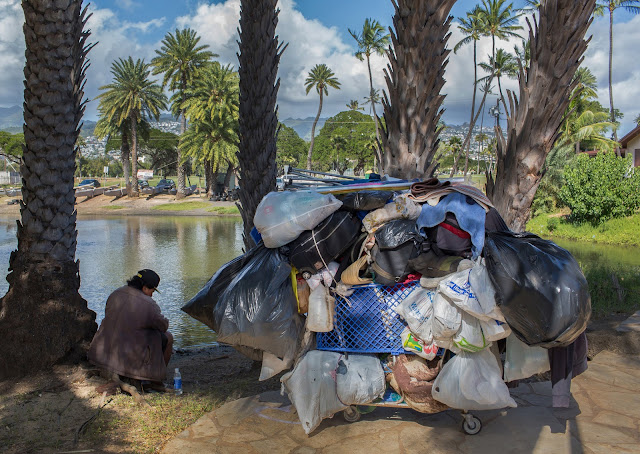 essay on serfs vs. the homeless The common people were divided into peasants and serfs there was a huge  difference between being a peasant and being a a serf serfs were bound to the.