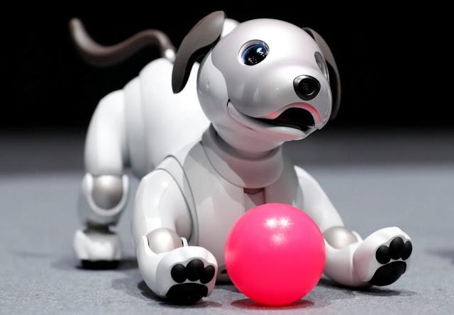 سوني تعيد إحياء كلبها الآلي AIBO مع جعله أكثر ذكاء وسلاسة في الحركة