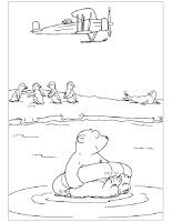 דובי קוטב לצביעה