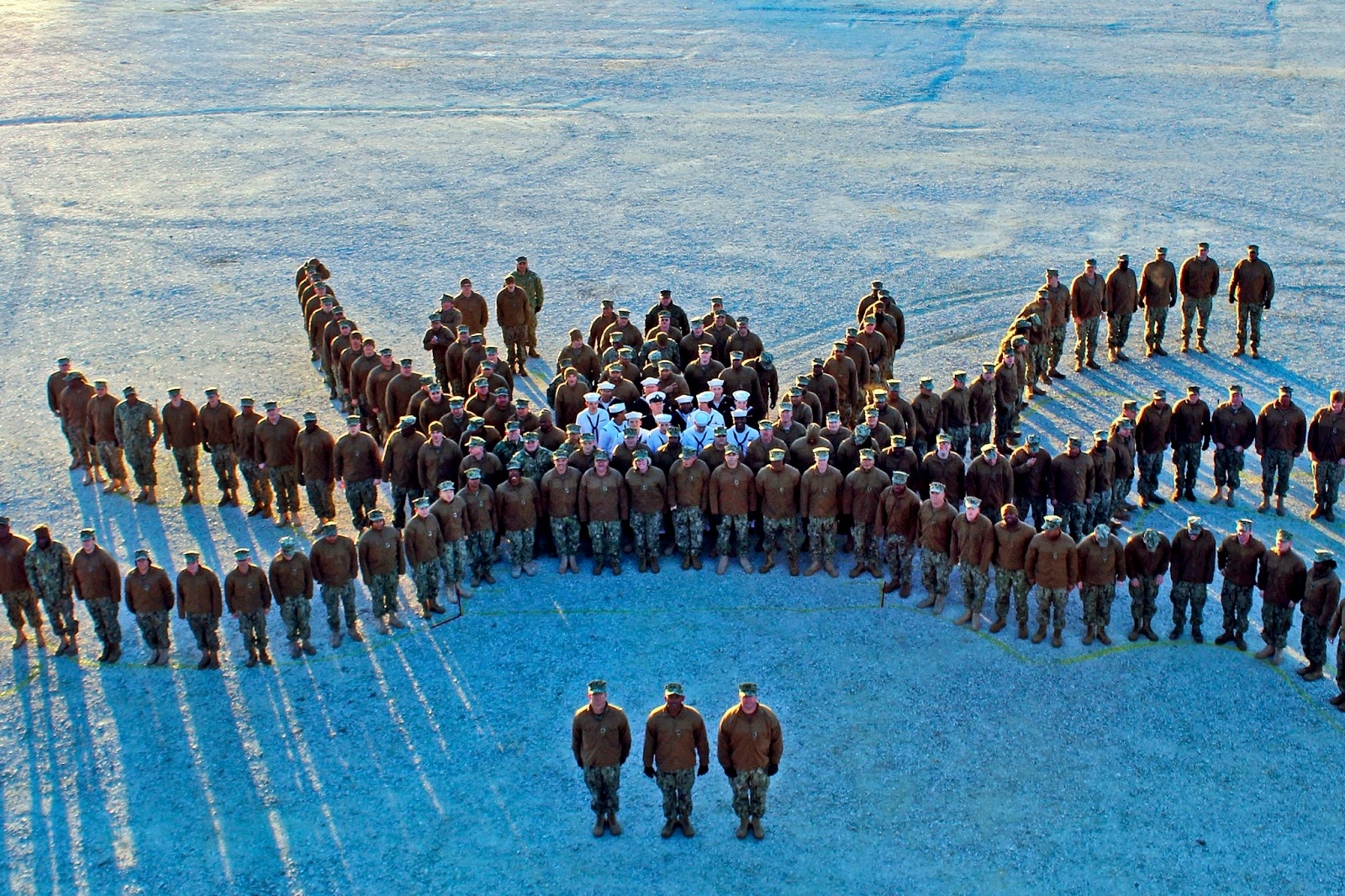 Sailors form an octopus similar to one on their command logo in Williamsburg, Va., Jan. 23, 2013. The sailors are assigned to Navy Cargo Handling Battalion 1, Navy Expeditionary Logistics Support Group. - Source: U.S. Defense Department