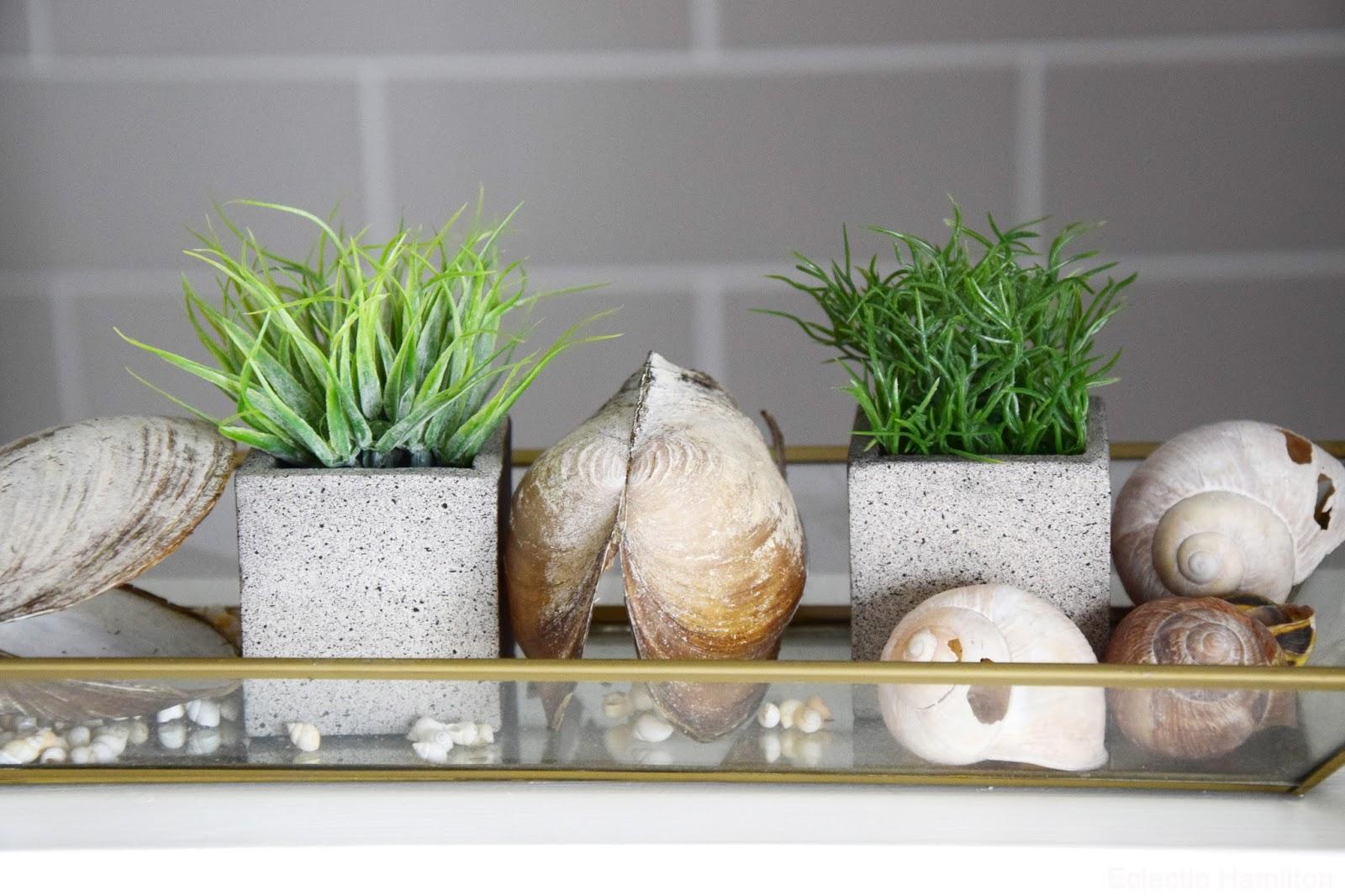 Pflanzen Fur Mein Badezimmer Und Einblicke Endlich Mal Wieder