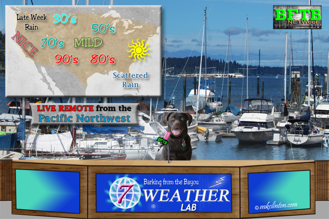 BFTB NETWoof Weather live from the Pacific Northwest