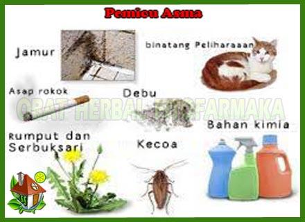 asma karena alergi, asma non alergi, asma akut, asma karena debu