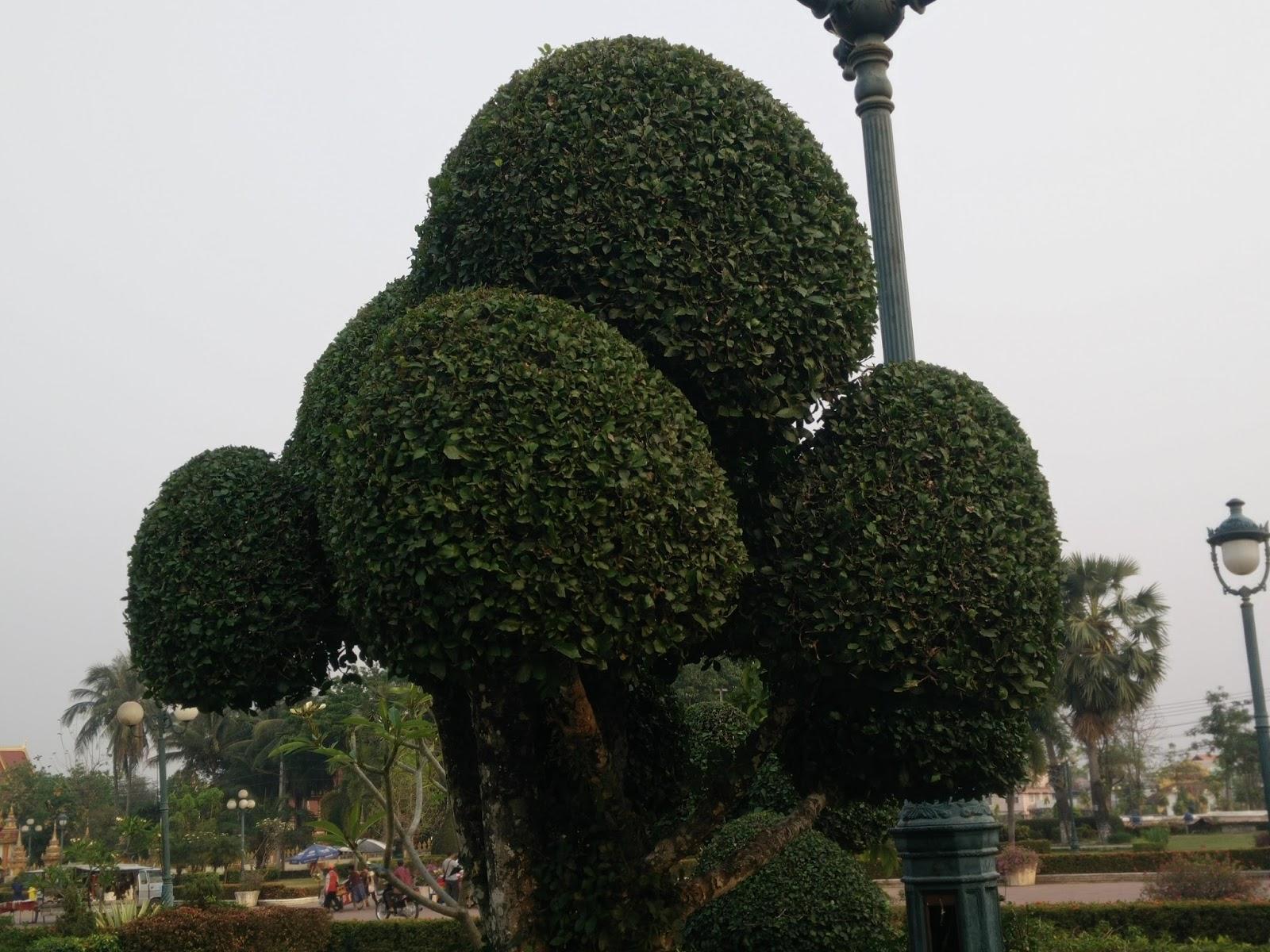 Nong Sa Phang Lenh Park