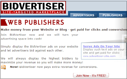 BidVertiser Webpublisher Best Alternative of Google Adsense ~ Share Your Conscience: A Knowledge Sharing Place