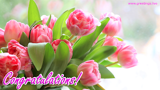 congratulations images greetings wishes tulips flowers