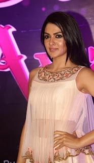 Actress Sakshi Chowdary Stills at Apsara Awards 2016 0007