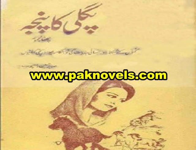 Pagli Ka Panja Urdu Novel By Sabir Hussain Rajpoot
