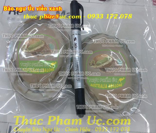hình bào ngư úc viền xanh nhập khẩu size 8