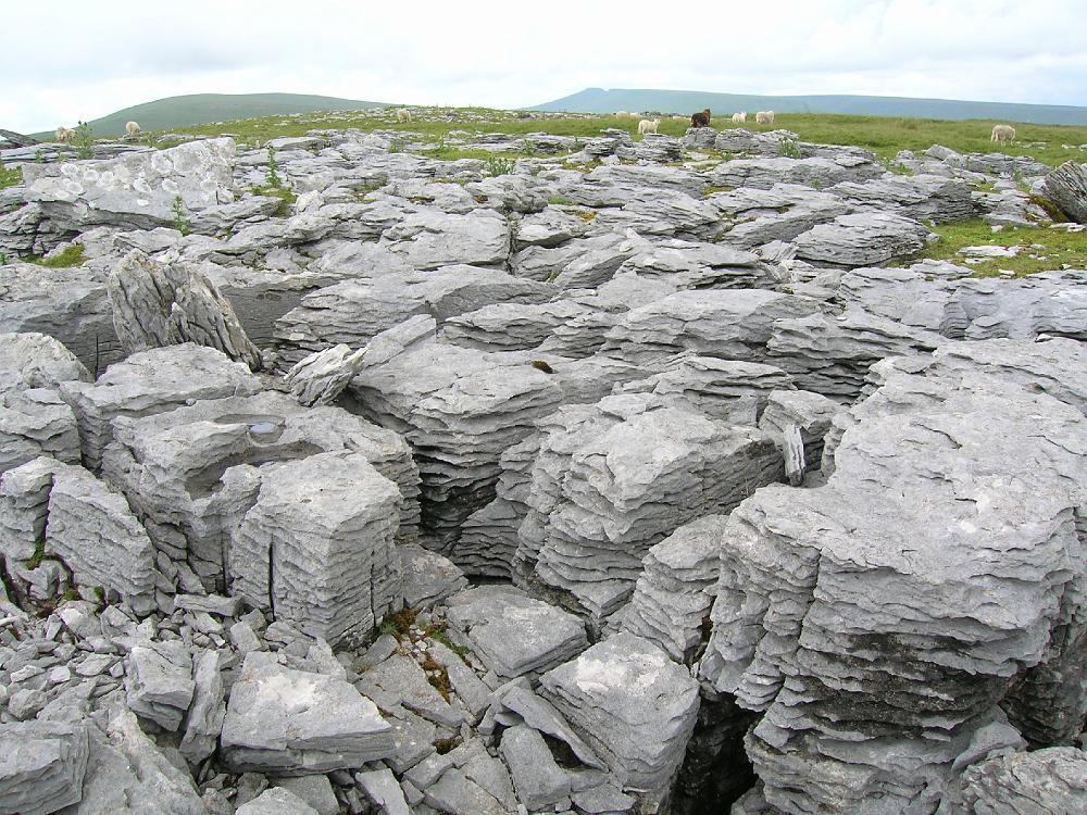 Limestone : Limestone Introduction