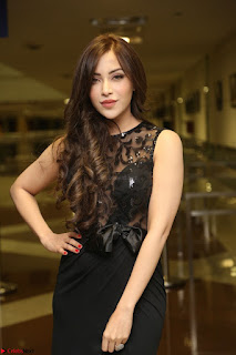 Angela Krislinzki in Transparent Black Gown at Rogue Movie Teaser Launch 1st March 2017 012.JPG