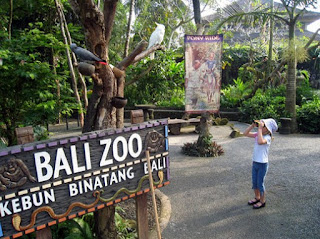 http://www.teluklove.com/2017/02/pesona-keindahan-wisata-bali-zoo-park.html