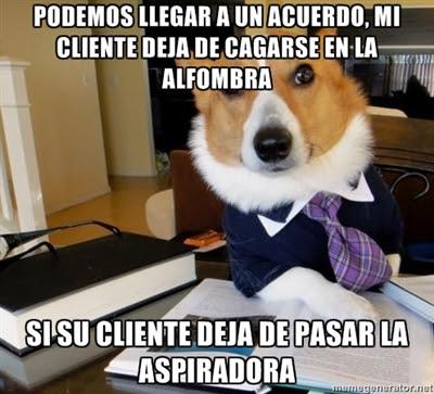 abogado perro imagen