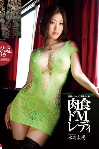 LID 037 Carnivorous De M Lady Mizuno Chaoyang Jav HD