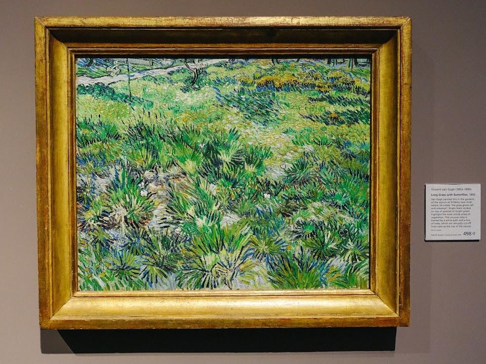 サン・ポール病院の庭の草地(Long Grass with Butterflies)1890年