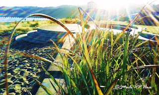 www.photographypassions.xyz/2016/04/landscape-photography-sundance.html