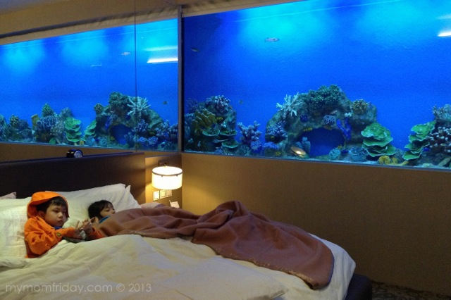 my mom friday fun friday aquatic weekend experience at hotel h2o. Black Bedroom Furniture Sets. Home Design Ideas